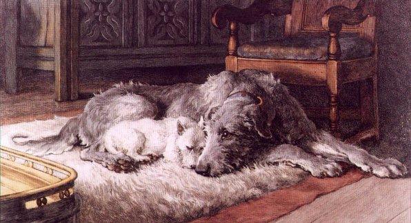 http://www.irishwolfhounds.org/Comrades.jpg