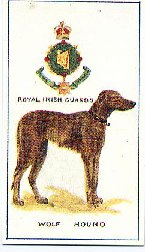 Mascot cigarette card