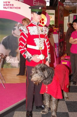 Fergal at Crufts 2007