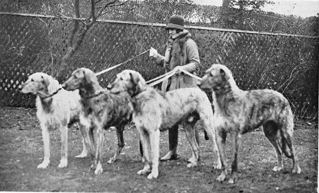 Mrs. Knox with group of hounds